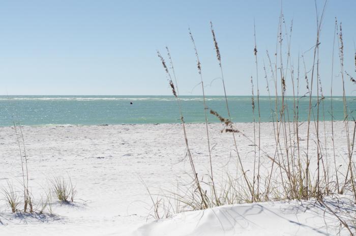 Florida (1 of 1)
